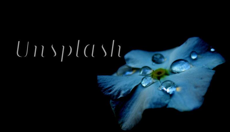 写真のフリー素材はココだけで十分。高品質すぎる写真が集まる「Unsplash」